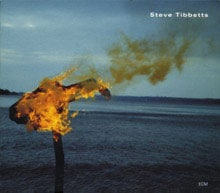 A Man About a Horse by Steve Tibbetts