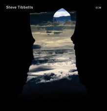 Steve Tibbetts: Natural Causes