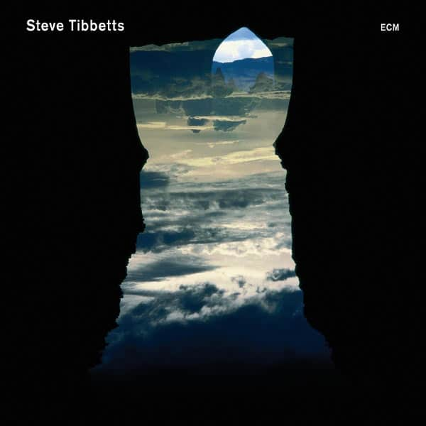 Natural Causes by Steve Tibbetts