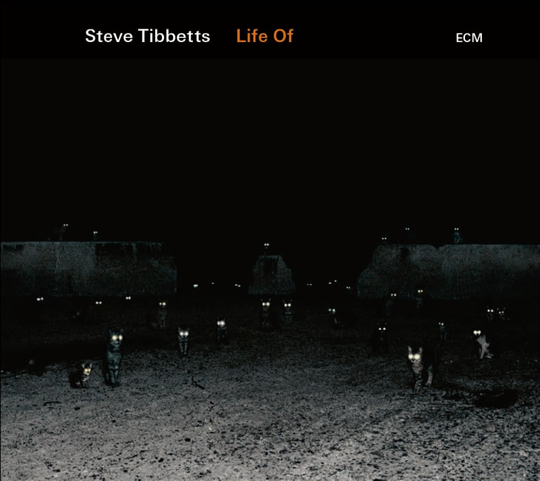 Life Of by Steve Tibbetts