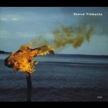 Steve Tibbetts: A Man About a Horse